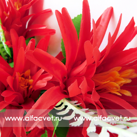 букет ананас цвета красный 4