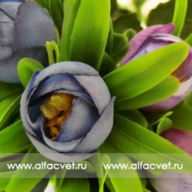 букет камелий с крупными листьями цвета фиолетовый 7