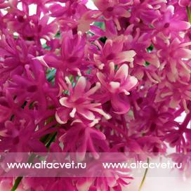 букет из луговых цветов цвета фиолетовый 7