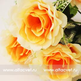 букет роз цвета оранжевый с белым 16