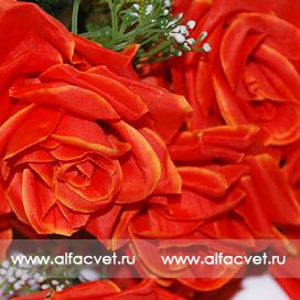 букет роз цвета красный 4