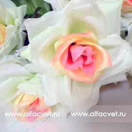 букет роз цвета белый с розовым 19