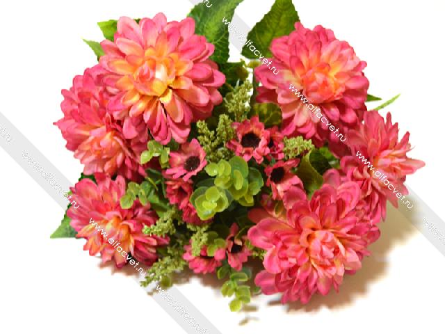 Купить цветы георгины пермь подарок на день рождения мужчине 50 лет знак водолей