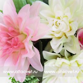 букет георгинов с добавками цвета белый с розовым 19
