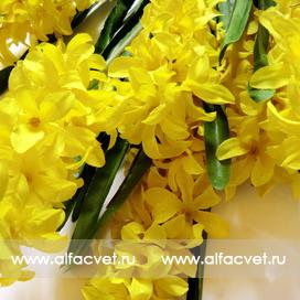букет гиацинт цвета желтый 1