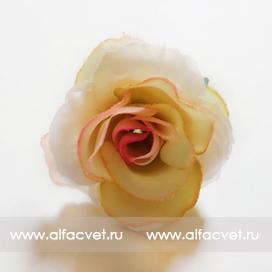 головка роз диаметр 4 цвета чайный 3