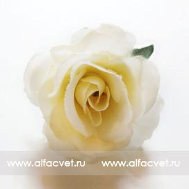 головка роз диаметр 4 цвета белый 6