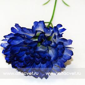 гвоздикa цвета синий 12