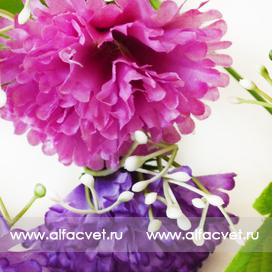 гвоздикa цвета фиолетовый с малиновым 22