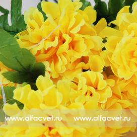 хризантемы цвета желтый 1