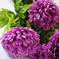 искусственные цветы хризантемы цвета сиреневый 8