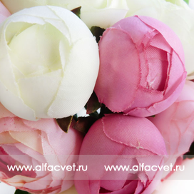 букет камелий цвета белый с розовым 19
