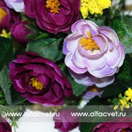 камелия цвета фиолетовый и темно-фиолетовый 27