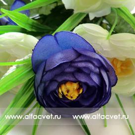 камелия цвета фиолетовый с белым 15