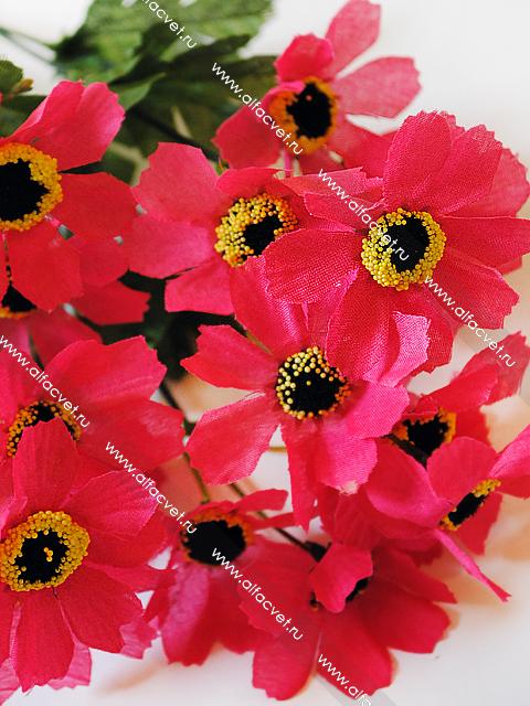 Цветы петербург букеты интернет магазин