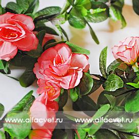 лиана с цветами цвета розовый 5