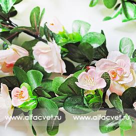 лиана с цветами цвета светло-розовый 9