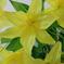 искусственные цветы лилии цвета желтый 1