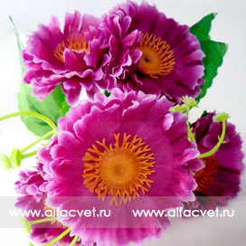 букет маргаритка-фиалка с добавкой цвета темно-розовый 10
