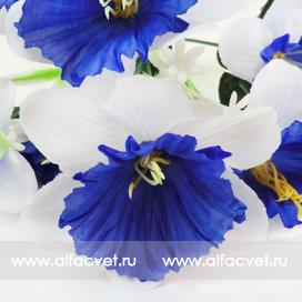 букет нарциссов цвета синий с белым 58