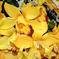 искусственные цветы орхидеи цвета желтый 1