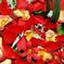 искусственные цветы орхидеи цвета красный 4