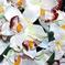 искусственные цветы орхидеи цвета белый 6