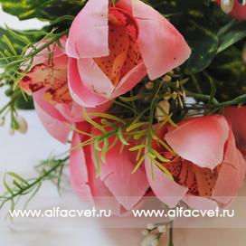 орхидеи цвета светло-розовый 9