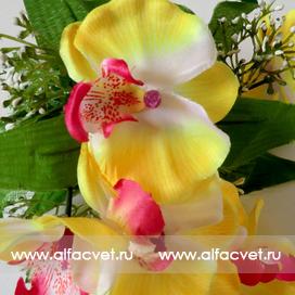 букет орхидей с добавкой травка цвета белый с желтым 36
