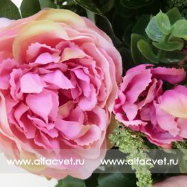 букет пионов цвета розовый 5