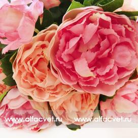 букет пионов цвета кремовый с розовым 56