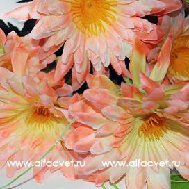 ромашки с папоротником цвета светло-розовый 9