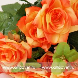 розы цвета оранжевый 2