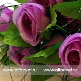 роза цвета фиолетовый 7