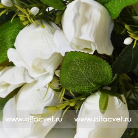 розы цвета белый 6