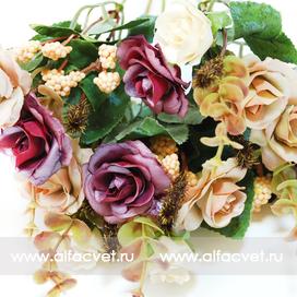 розы цвета фиолетовый с белым 15