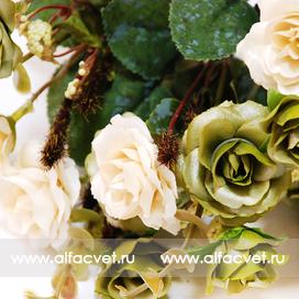 розы цвета зеленый с белым 34