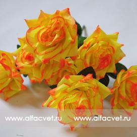 розы цвета желтый 1