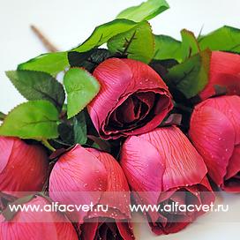 букет роз цвета темно-розовый 10