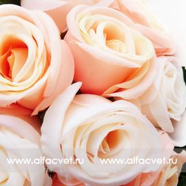 букет роз цвета кремовый с белым 40