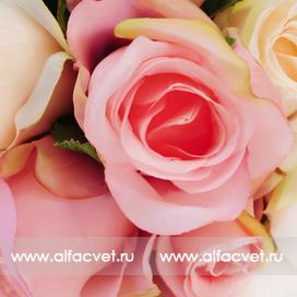 букет роз цвета кремовый с розовым 56