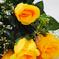 искусственные цветы розы цвета желтый 1