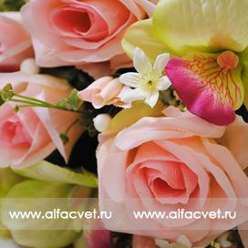 розы и орхидеи цвета розовый с салатовым 44