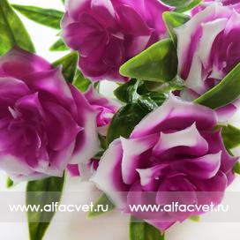 букет роз пластик цвета фиолетовый 7