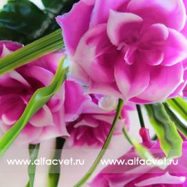букет роз пластик с добавкой цвета фиолетовый 7