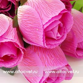 розы с каплями цвета малиновый 11