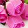 искусственные цветы розы с каплями цвета малиновый 11
