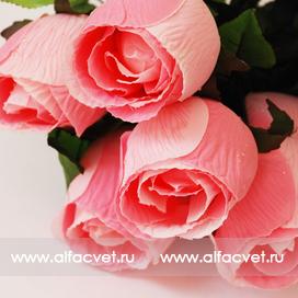 розы с каплями цвета розовый 5