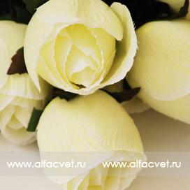 розы с каплями цвета белый 6