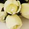 искусственные цветы розы с каплями цвета белый 6